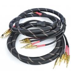 Vincent Bi-ware Speaker Cable 2x3mt