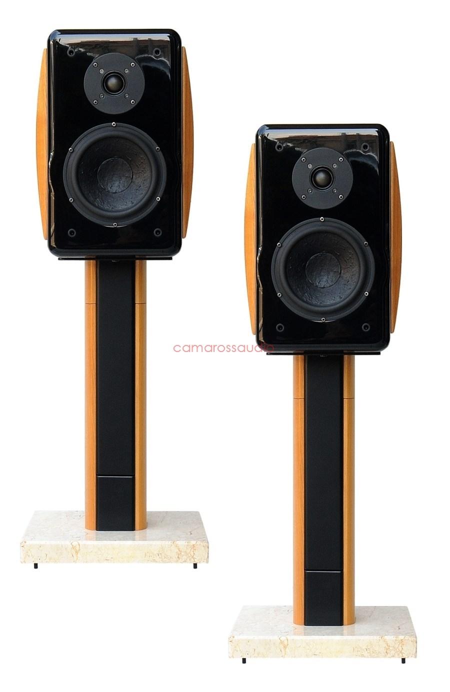 Usher Compass X 719 Speaker Rsw 708 Stand Camaross Audio