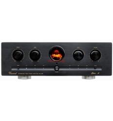 Vincent SV-236 Hybrid Stereo Entegre Amp.
